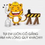 cong ty tan mai thanh bao tri website