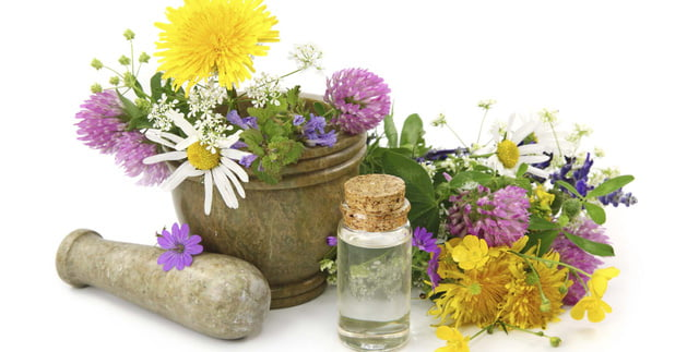 Thien nhien 3 - Chia sẻ kinh nghiệm chọn mỹ phẩm tốt cho các spa - Điều mà các chủ spa cần biết !